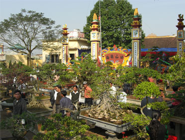 Hội hoa Vị Khê Nam Định